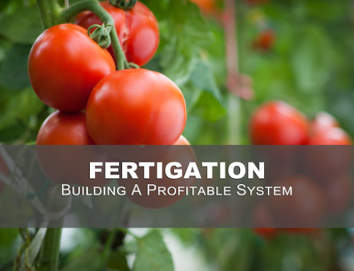 How Fertigation Helps Greenhouse Grower's Crop Production