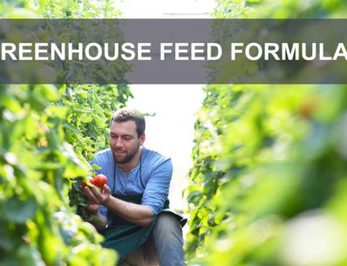Getting Greenhouse Feed Formulas just right
