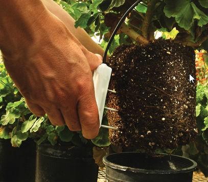 Greenhouse Soil Sensor