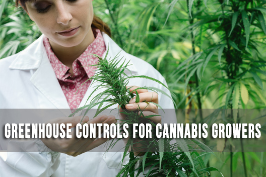 Greenhouse Controls