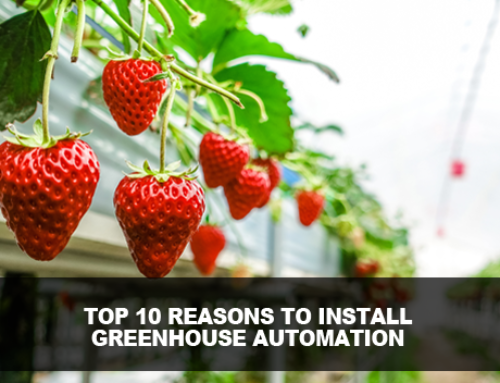 Top 10 Reasons to Install Greenhouse Automation Systems