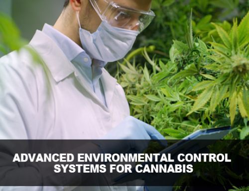 Advanced Environmental Control Systems for Cannabis Production