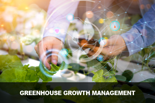Greenhouse Growth Management
