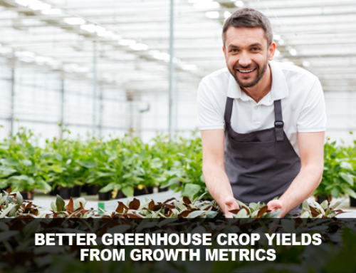 The 1 Metric that You Are NOT using for Better Greenhouse Crop Yields