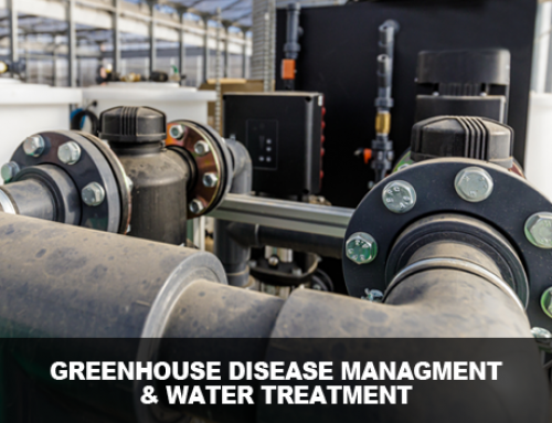 Greenhouse Disease Management with Water Treatment