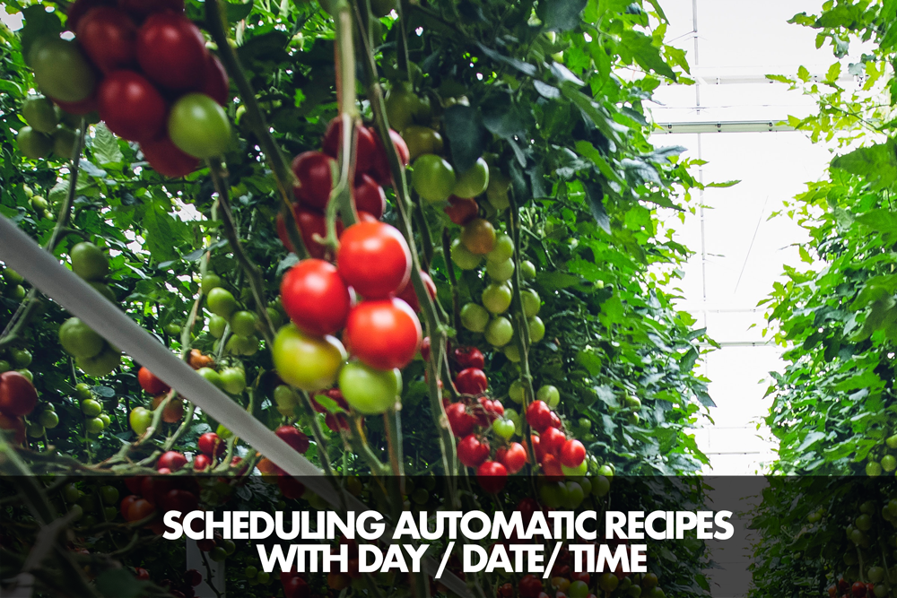 Scheduling automatic recipes with day-date-time
