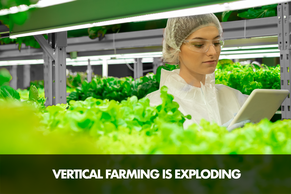 Vertical Farming Is Exploding