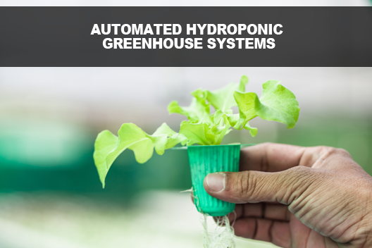 Automated Hydroponic Greenhouse Systems